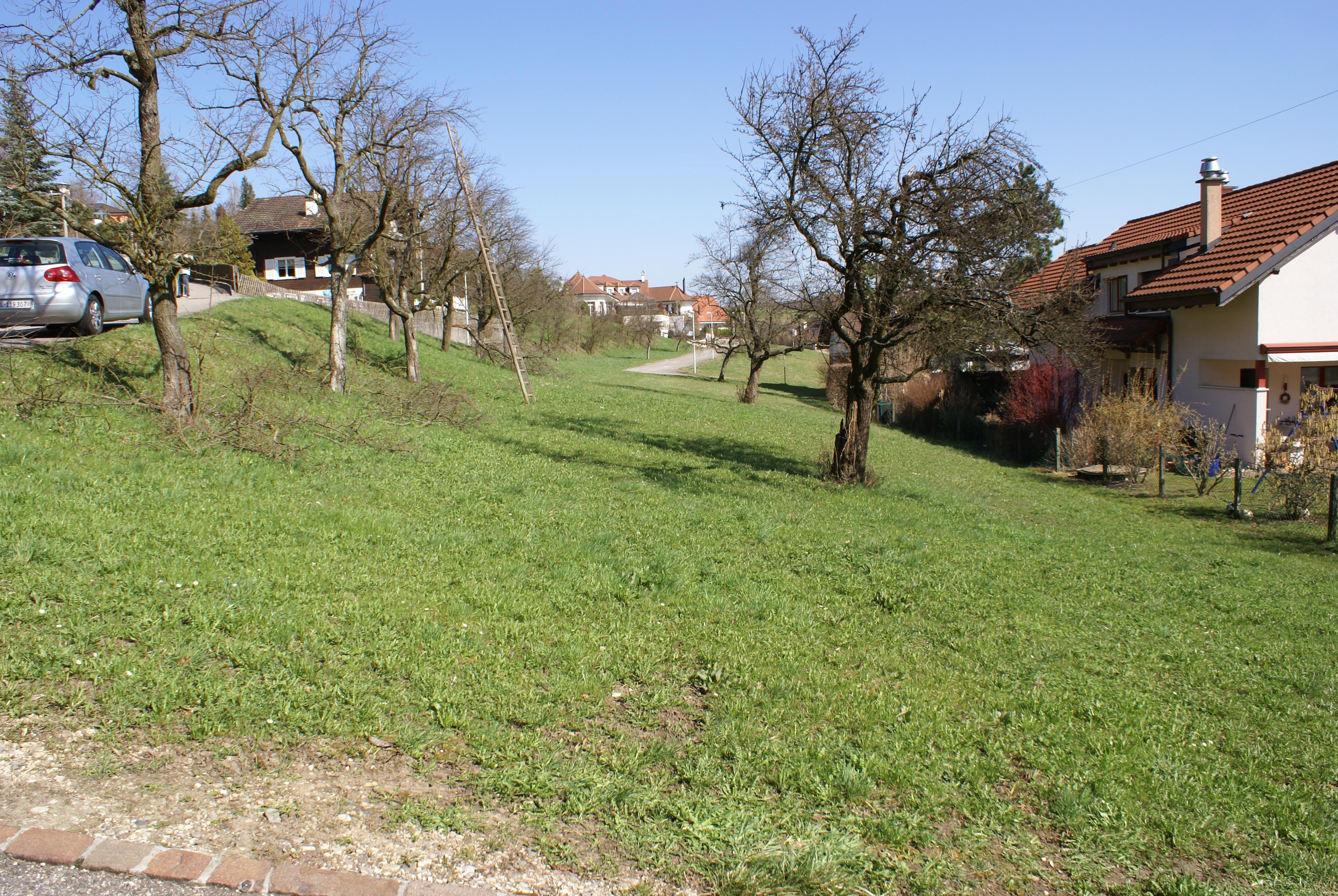 Baulandparzelle in Büren / SO (verkauft)