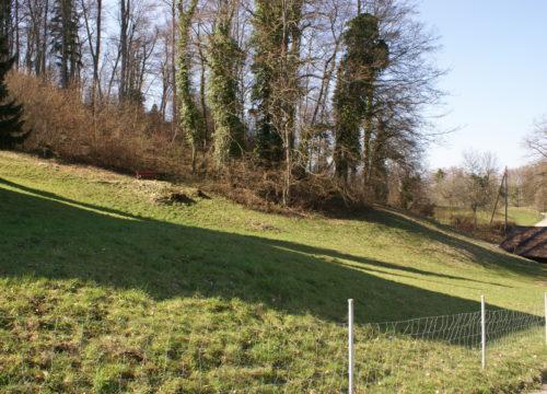 Baulandparzelle in Burg i.L. / BL (verkauft)