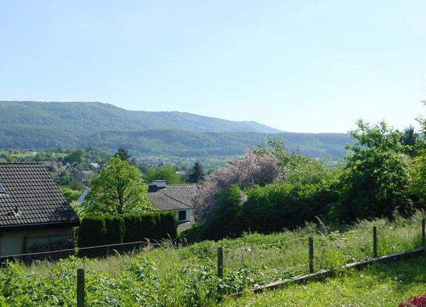 Bauland in Therwil (verkauft)